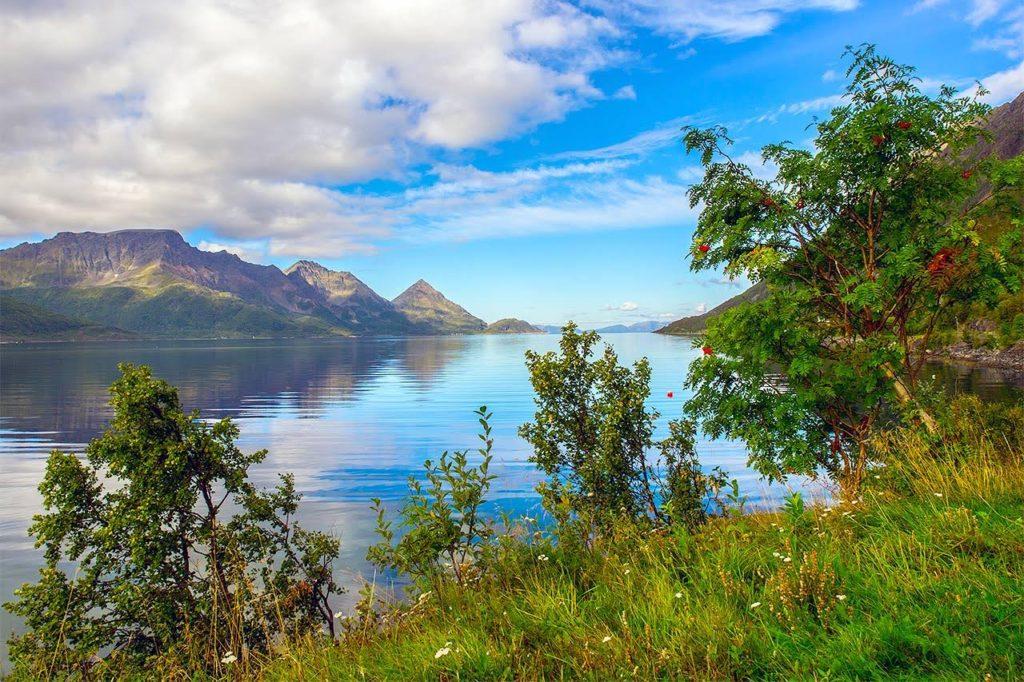 Trolig på Kvaløya